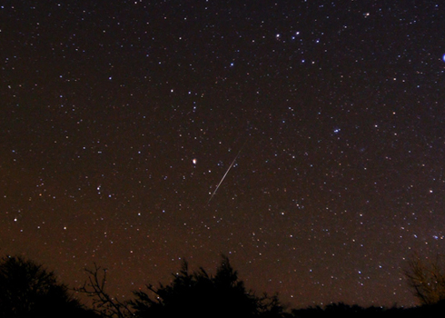 Amateur astronomer meteor shower observing form agree, the