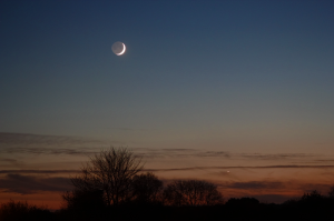 The crescent Moon and Venus
